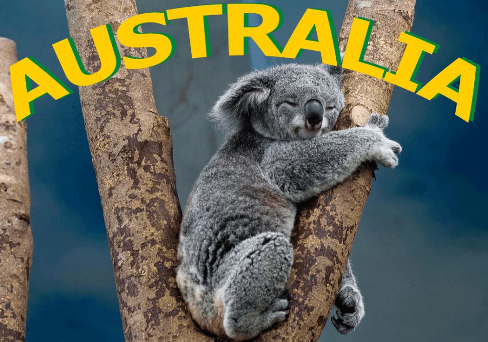 Visa de Estudiante Subclase 500 para Australia